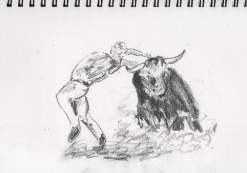 Bullfight 3