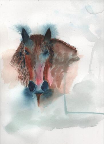 Dartmoor Pony 1